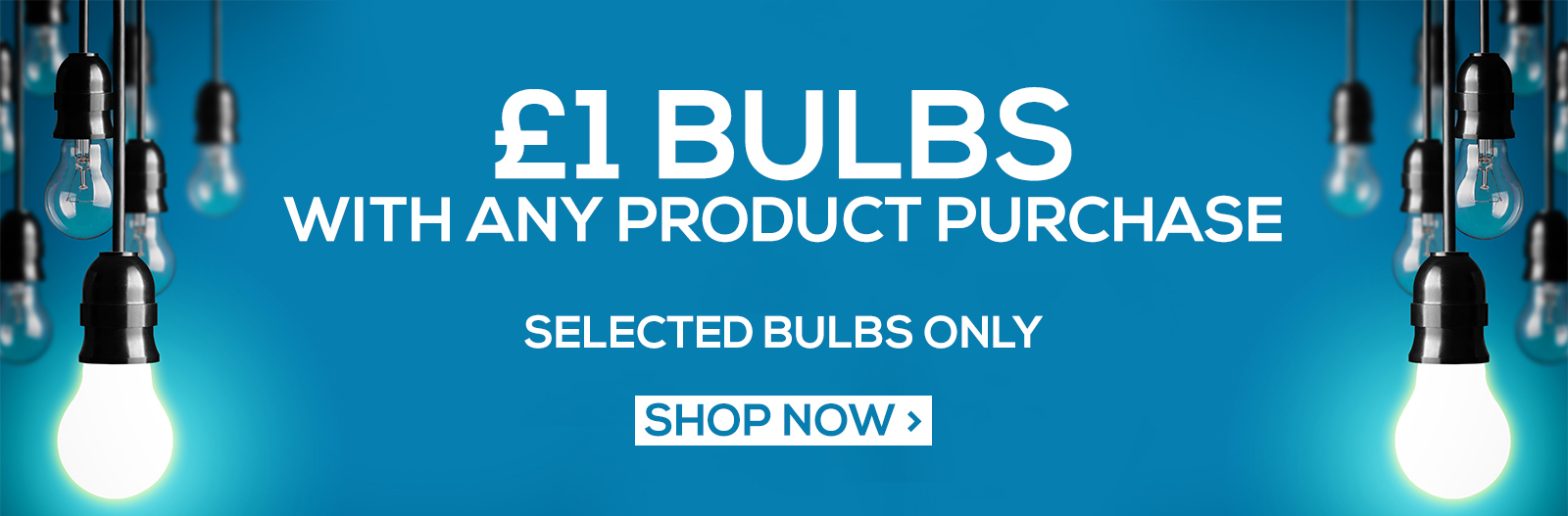 One Pound Bulb Offer